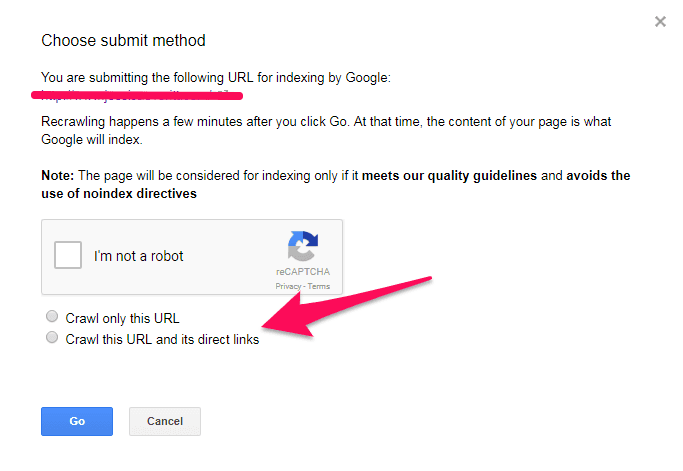 Giving the authorization to Google to crawl your website