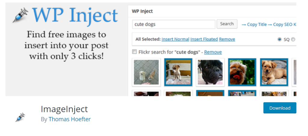 WP Inject WordPress plugin